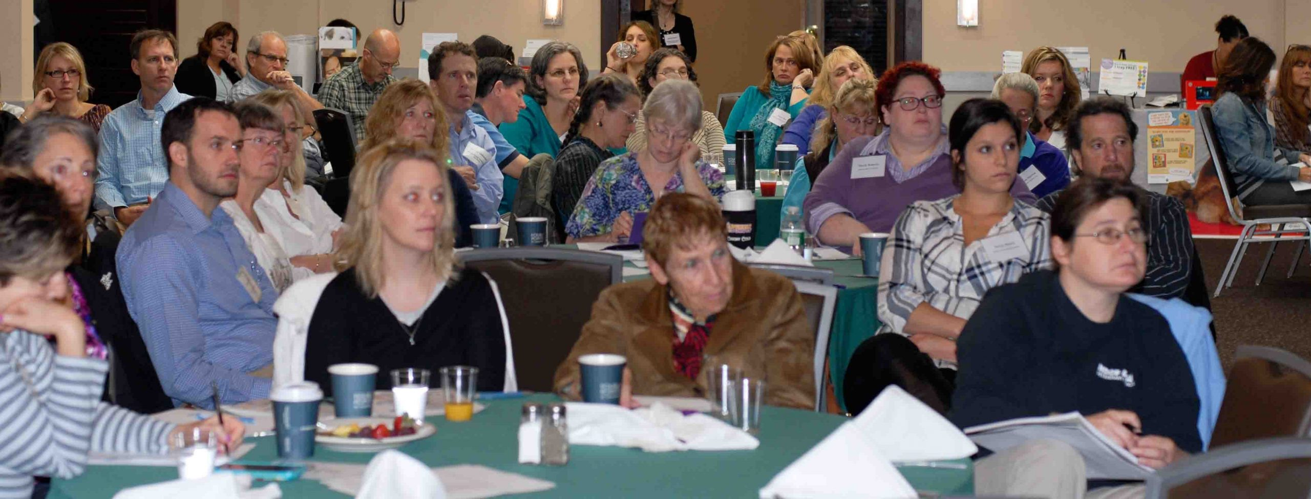 Veterinary Management Council Of Ct
